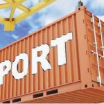 Nigeria's yearly exports to South Africa exceeds $3.8bn‎ says Ahmed