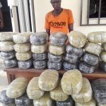 NDLEA smashes drug syndicates in Nasarawa, Edo, FCT